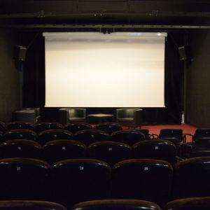 Zdjęcie przedstawia wnętrze sali kameralnej