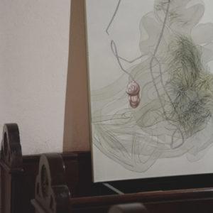 """Zdjęcie przedstawia fragment wystawy """"Szkielety, tkanki i odbicia"""" w ramach Arterii.TG podczas Gwarków"""