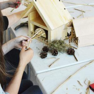 Zdjęcie przedstawia uczestniczkę warsztatów wykonującą hotelik dla owadów