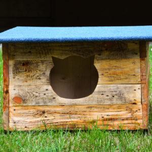 Zdjęcie przedstawia domek dla kota znajdujący się na trawniku przed TCK