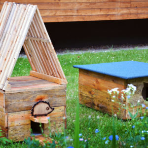 Zdjęcie przedstawia domek dla kotów i dla jeża znajdujące się na trawniku przed TCK