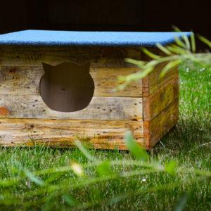 Zdjęcie przedstawia domek dla kotów znajdujący się na trawniku przed TCK