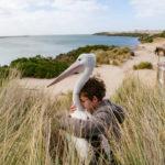 """Kadr z filmu """"Chłopiec z burzy"""" przedstawia siedzącego w zaroślach na plaży chłopca przytulającego pelikana"""