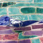 zdjęcie kolorowej mozaiki